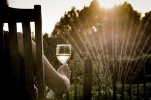 drinking-garden-relax-9206-300x199